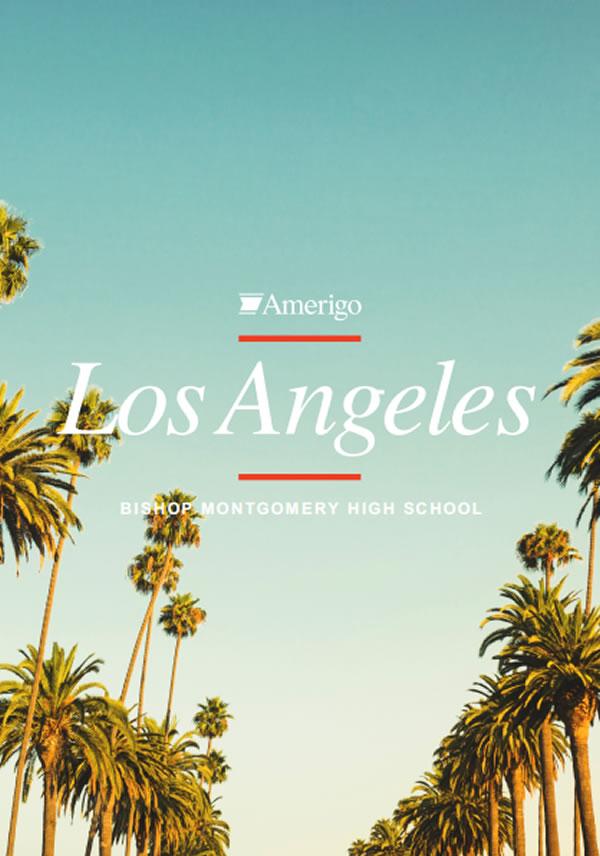 Amerigo Los Angeles Brochure